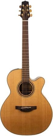 Takamine P3NC, with Case