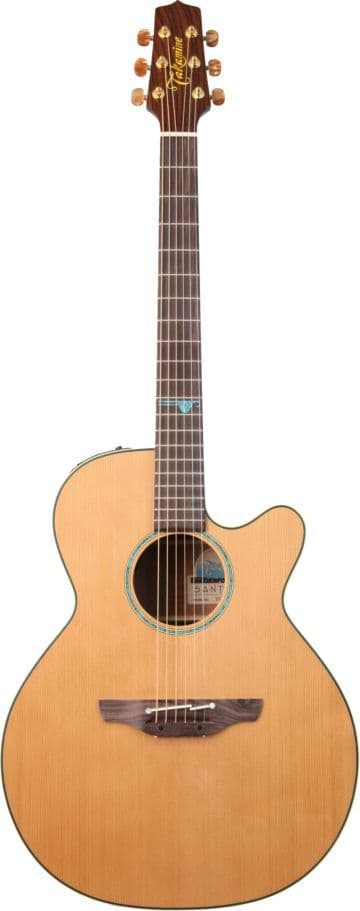 Takamine TSF40C, Includes Official Hard Case